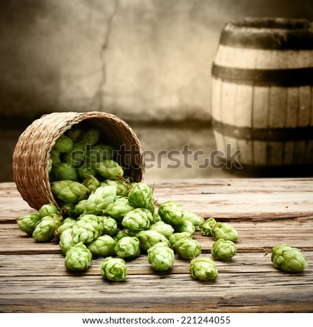 space for glass of beer and hop  - stock photo