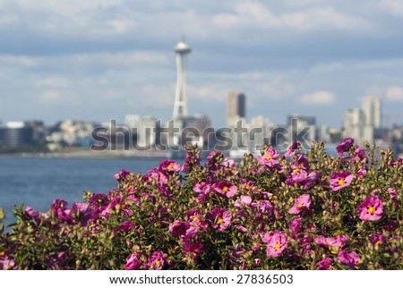 Space Needle blur with flowers in the foreground in summer - stock photo