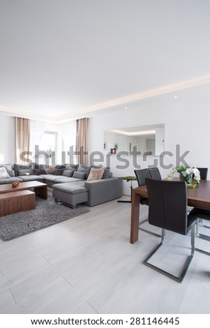 Spacious bright family room with modern exclusive decor - stock photo
