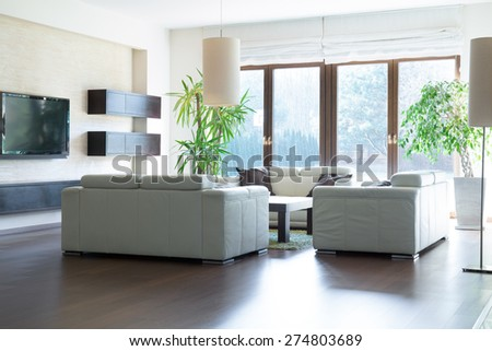Spacious living room with exit to the garden - stock photo