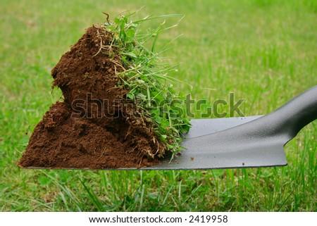 Spadeful of dirt - stock photo