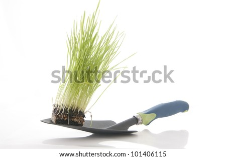 Spadeful of dirt  Green grass with garden tool isolated against a white background - stock photo