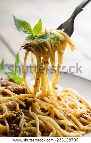 Spaghetti with tomato sauce and basil on fork - stock photo