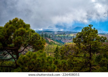 Spain, Canary Islands, Tenerife. Beautiful landscape between trees. - stock photo