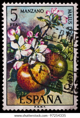 SPAIN - CIRCA 1975: A stamp printed in Spain shows apples, circa 1975 - stock photo