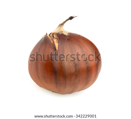 Spanish chestnuts isolated on white - stock photo