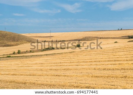 spanish field landscape