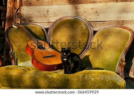 Spanish guitar and a black cat on an old sofa