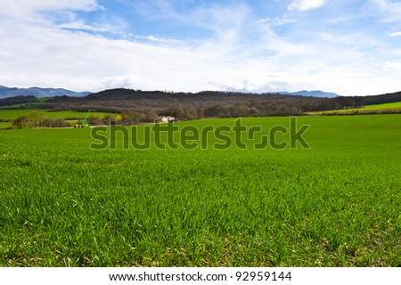 Spanish Spring Fields on the Background of Snowy Peaks of the Pyrenees - stock photo