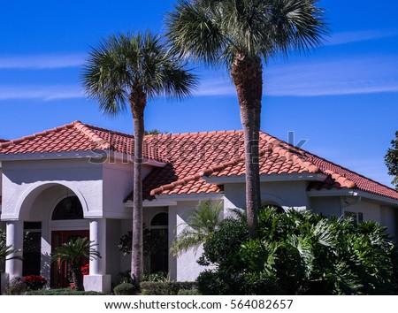 Spanish Tile Roof Palm Trees Stock Photo 564082657 Shutterstock