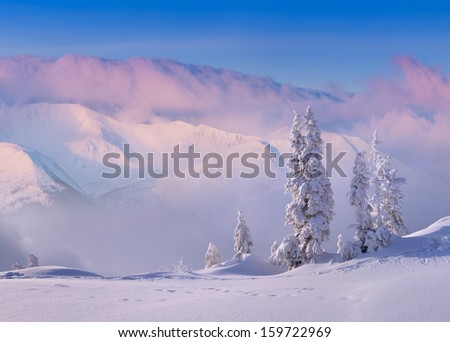Spark the sun during the snow storm in the mountains - stock photo