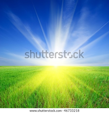 sparkle sun rising in a green field - stock photo