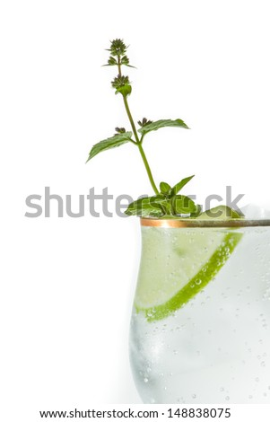 sparkling water served in a gold rimmed wine glass with a lime and mint garnish
