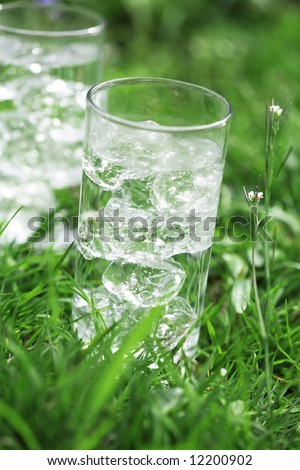 sparkling water with icecubes on a meadow