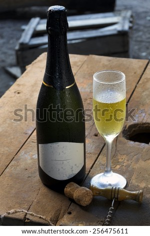 sparkling wine - stock photo