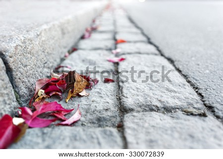 Sparse image with fallen autumn leaves by curb on street - stock photo