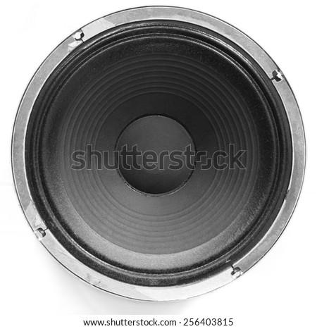 Speaker close-up. - stock photo