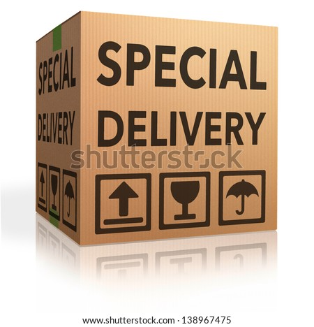 special delivery important shipment special package sending express shipping cardboard box from online internet web shop, webshop icon