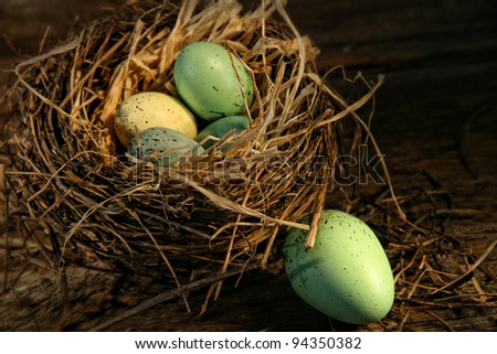 Speckled eggs in nest on wood