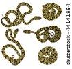 Speckled forest pitviper (Bothriopsis taeniata) - stock photo