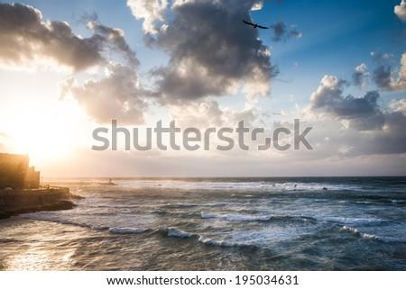 Spectacular dramatic cloudy sky with bird over the Mediterranean sea with waves near Yafo in Tel-Aviv beach - stock photo
