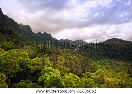 Spectacular jungle landscape with mountain range - stock photo