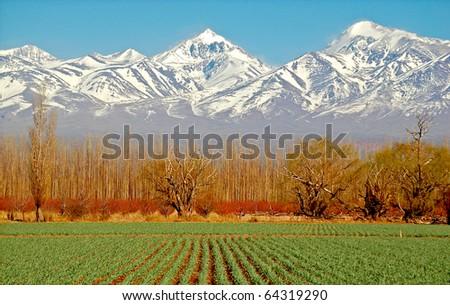Spectacular Patagonia mountain scenic - stock photo