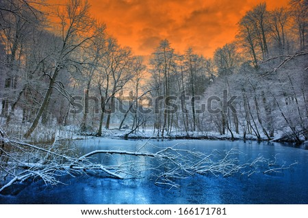 Spectacular sunset over winter forest - stock photo