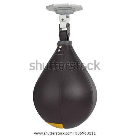 Speed punching bag. 3D graphic object on white background isolated - stock photo