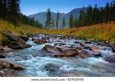 speed river in mountain, altai - stock photo