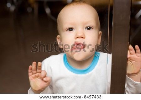 Spellbound baby cling by tongue to the shopwindow - stock photo