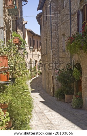 Spello (Perugia, Umbria, Italy) - Typical old street with plants and flowers