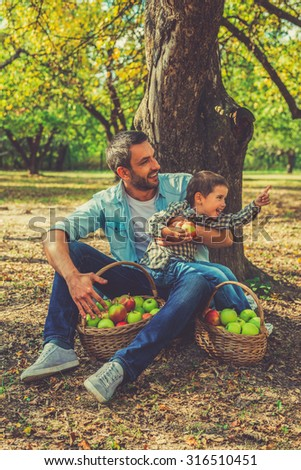 Spending quality time together. Playful little boy holding apple and looking away while his father sitting near him on the ground   - stock photo