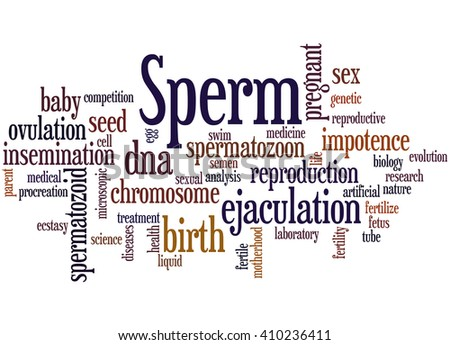 Sperm, word cloud concept on white background. - stock photo