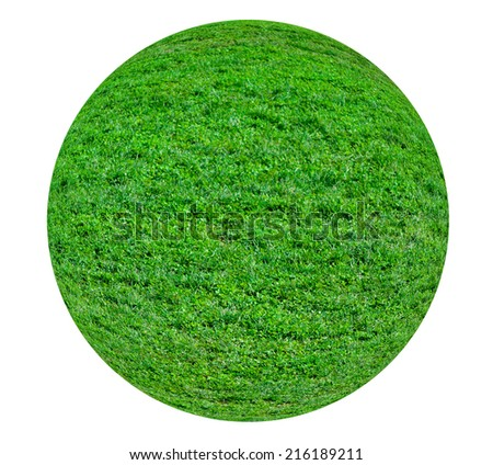 Sphere of grass isolated on white background