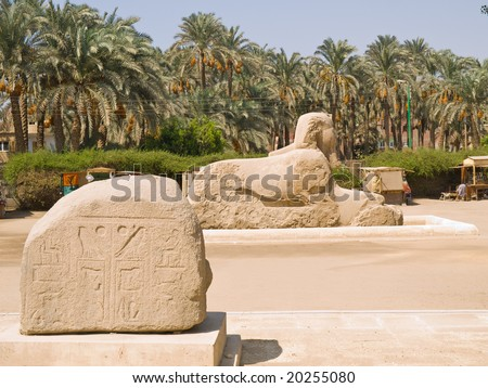 Sphinx and stone with hieroglyphics. Memphis open-air museum. Egypt series - stock photo