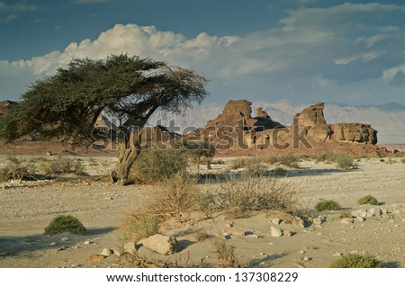 Sphinx in the desert of Negev, Israel - stock photo