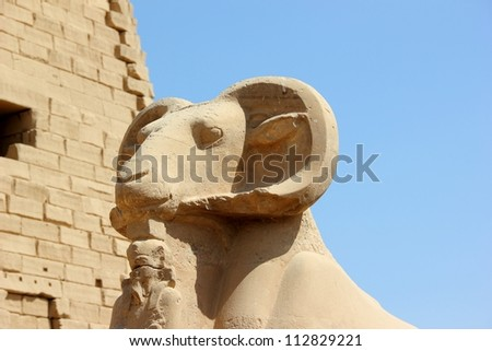 Sphinx. The Karnak Temple Complex in Luxor, Egypt. - stock photo