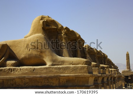 Sphinxes in Karnak Temple, Luxor, Egypt - stock photo