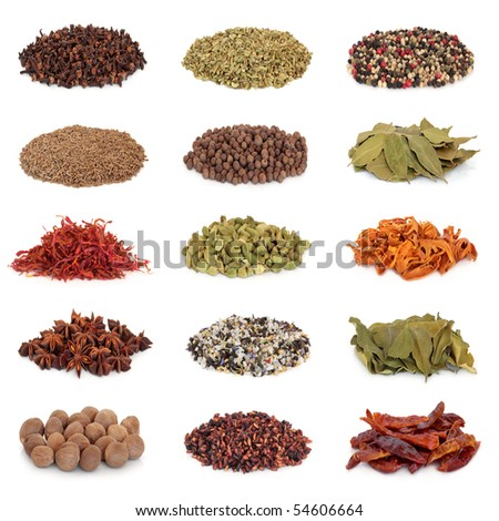 Spice and herb collection sampler isolated over white background. - stock photo