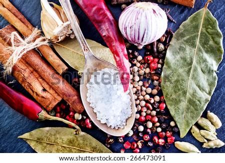 spice and salt - stock photo