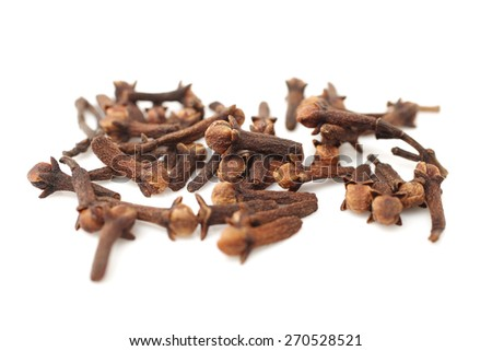 Spice cloves on white