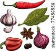 Spice. Onion, garlic, pepper, bay leaf, hot pepper drawing woodcut method. Raster version - stock photo