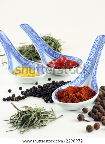 spices and condiments isolated on white - stock photo