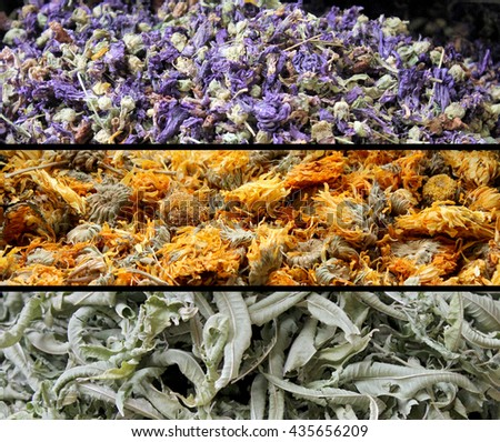 Spices and herbs for tea - stock photo