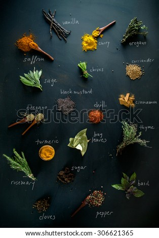 Spices and herbs. Variety of spices and mediterranean herbs. Spices with names - stock photo