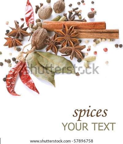 Spices border.Isolated on white - stock photo