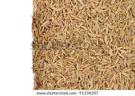 spices, caraway seed zira, background, isolation on the left, white background
