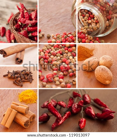 Spices collage