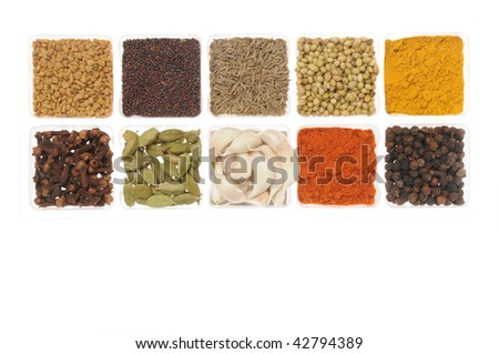 Spices from Indian state Andhra - stock photo